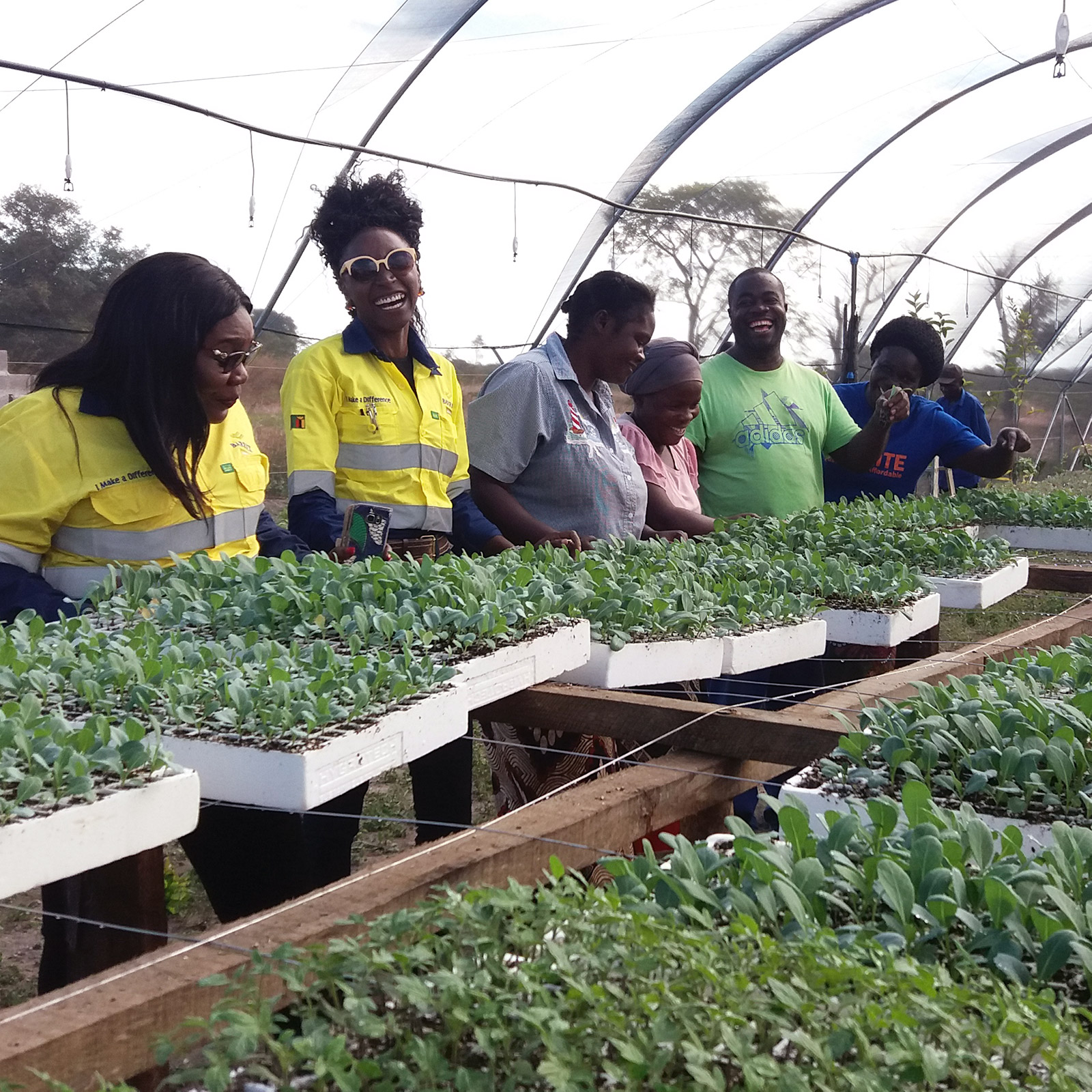 At the Lumwana copper mine in Zambia, a business empowerment program has been established by Barrick to help the women from the local communities grow vegetables as an additional source of income.
